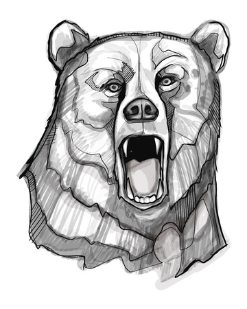 Hand drawn vector ink illustration or drawing of a bear head