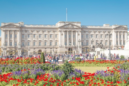 royality: In the background the picture shows the Buckingham Palace.In the foreground there are some beautiful flowers.