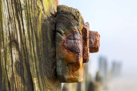 Wooden stakes at Sandsend Beach, North Yorkshire, UK Stock Photo