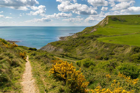South West Coast Path near Chapman's Pool, Jurassic Coast, Dorset, UK
