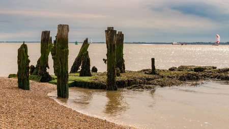 Wooden Stakes on a pebble beach, seen at Felixstowe Harbour, Suffolk, England, UK Stock Photo