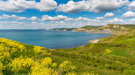 Jurassic Coast landscape near Worth Matravers, Jurassic Coast, Dorset, UK
