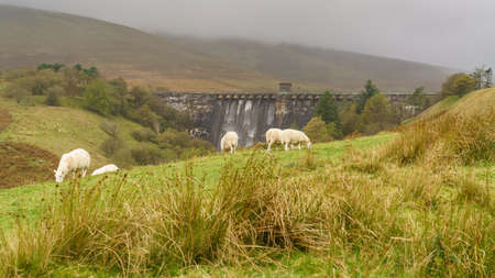 A walk towards the Grwyne Fawr Reservoir in the Brecon Beacons National Park, Powys, Wales, UK