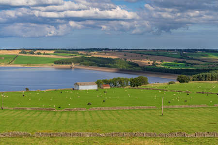 Looking to the east from the west side of the Derwent Reservoir, County Durham, England, UK