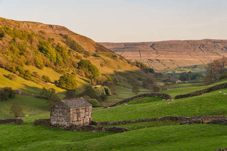 Swaledale landscape with stone barns on the fields between Keld and Thwaite, North Yorkshire, England, UK Фото со стока