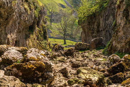 Trollers Gill, near Skyreholme in the Lower Wharfedale, North Yorkshire, England, UK