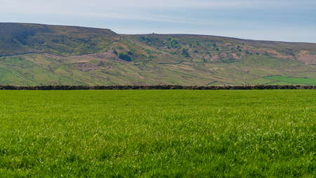 Yorkshire Dales landscape near Hartlington, North Yorkshire, England, UK