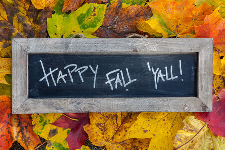 Happy fall slate surrounded by colorful leaves