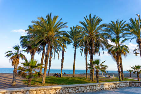 Malaga beach with palm trees Playa de la Carihuela, Torremolinos, Costa del Sol Occidental, Malaga, Andalusia, Spain