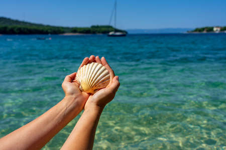 holding big shell on the beach blue sea background vacation Stok Fotoğraf