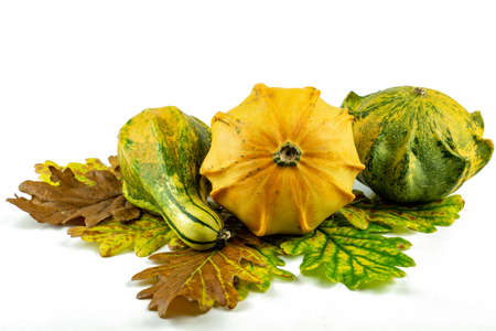 decoration pumpkins in a row with autumn leaves on white isolated background .