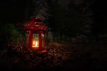 red christmas lantern at dusk in pine forest christmas mood .