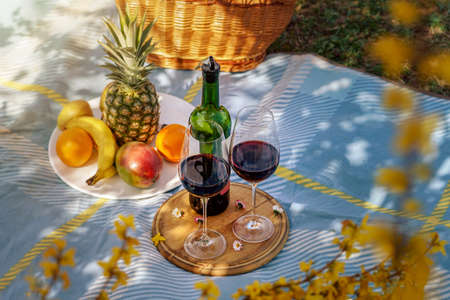 activities at home during isolation have a picnic with wine in your own garden . 版權商用圖片