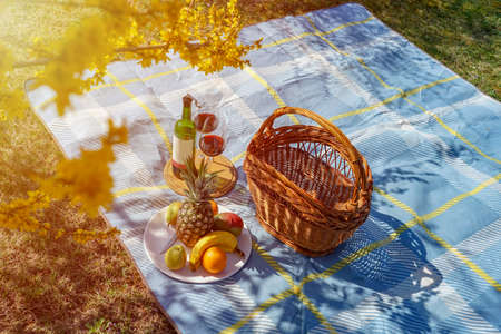activities at home during isolation have a picnic with wine and fruits in your own garden .