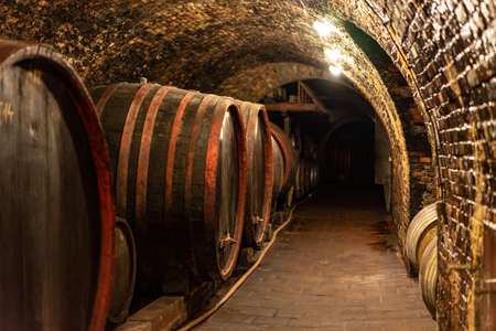 wooden old barrels in the rustic wine cellar with brick walls in villany hungary .