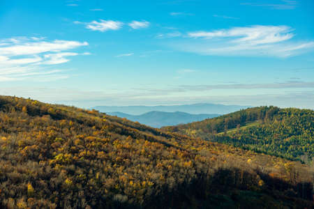 autumn forest hills in KÅ'szeg mountain Hungary