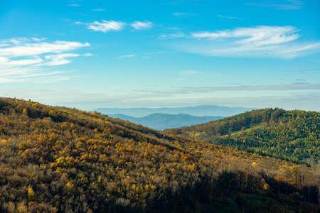 autumn forest hills in Kőszeg mountain Hungary 免版税图像