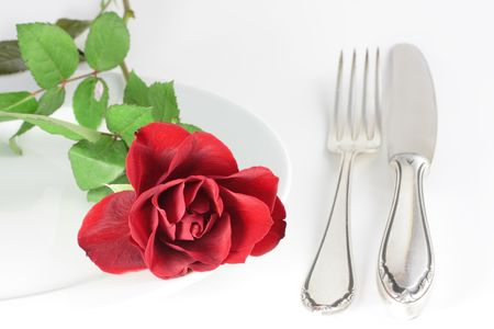 rose on a plate photo