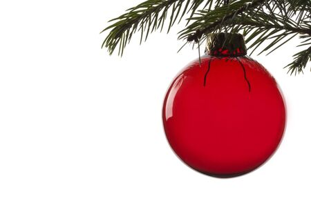 red christmas tree ball hanging from spruce leaf Stock Photo - 3647687