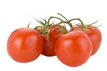 four tomatoes isolated on white background photo