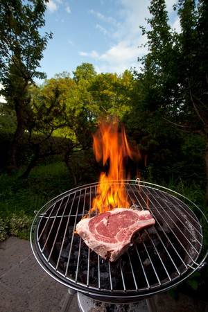 t bone steak on a grill outdoors Stock Photo - 7340133