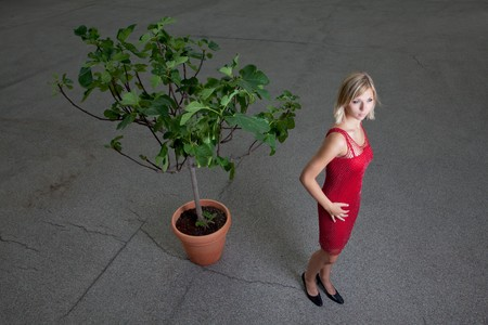 young woman in a red dress and a fig tree Stock Photo - 7534107