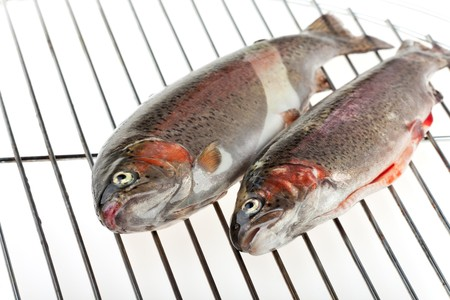 two rainbow trouts isolated on white Stock Photo - 7534120