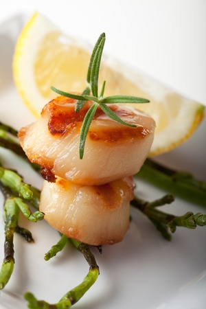 closeup of two grilled scallops