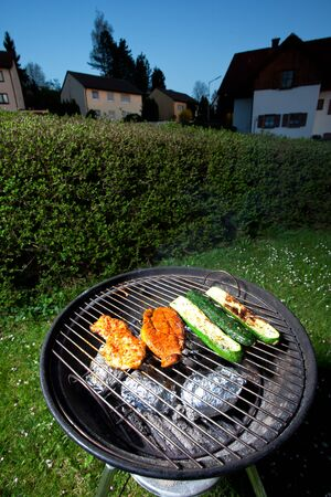pork steak and zucchini on a grill outdoors photo