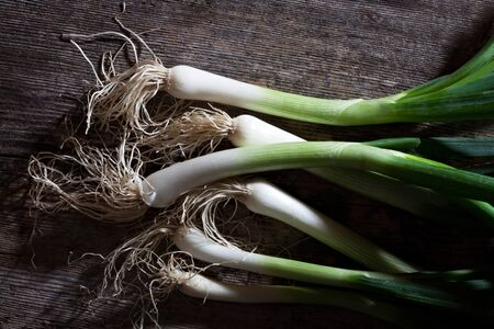 bunch of spring onions on wood Stock Photo - 13814082