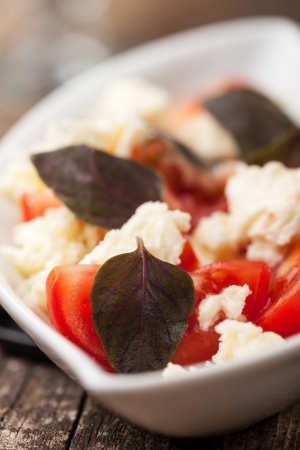 insalada caprese with purple basil Stock Photo - 14478190