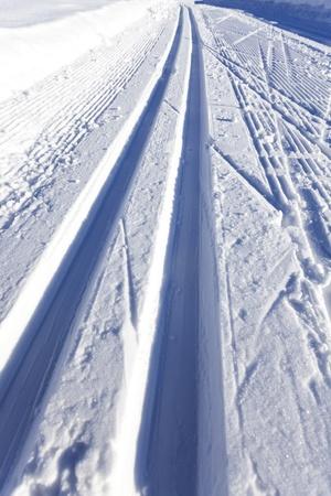 cross-country ski run Stock Photo - 17019096