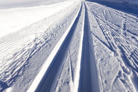 cross-country ski run Stock Photo - 17019099