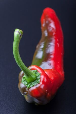 closeup of a red green pepper Stock Photo - 17086816