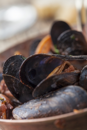 closeup of blue mussels  photo
