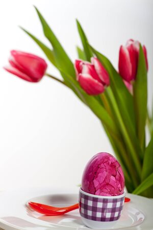 easter egg and tulips  Stock Photo - 17752424