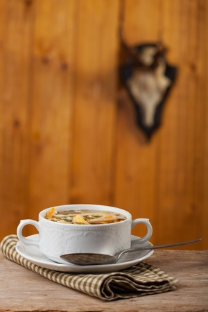 bavarian pancake soup in a bowl  Stock Photo - 18032887
