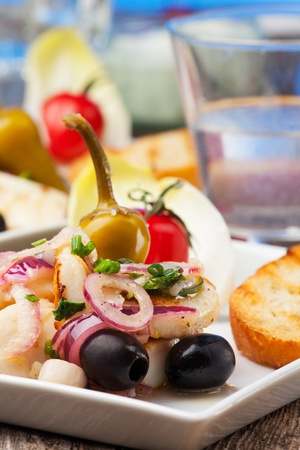 greek salad of grilled octopus Stock Photo - 18937528