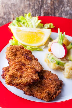 wiener schnitzel and potato salad  Stock Photo - 18937530