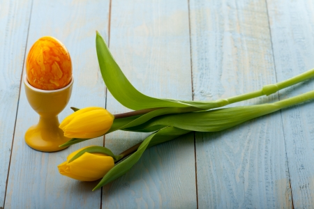 yellow tulip and egg  Stock Photo - 18937521