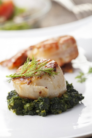 closeup of a grilled scallop on spinach  Stock Photo - 19087027