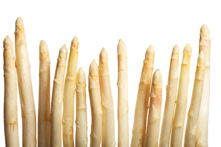 raw white asparagus  Stock Photo - 19211310