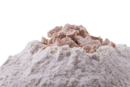 closeup of yeast Stock Photo - 19385140