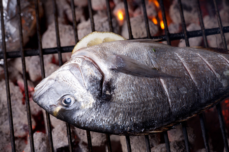 dorade: bream on a charcoal grill