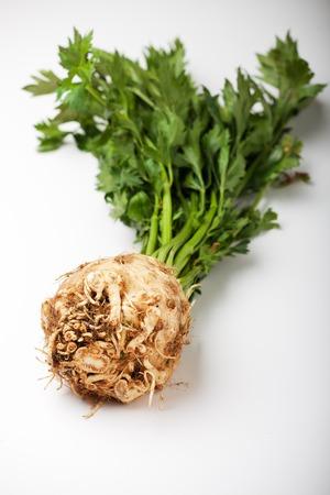 celeriac: single fresh celery on a white background