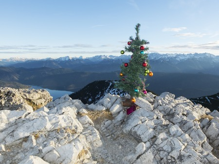 artifical: artifical christmas tree on the herzogstand Stock Photo