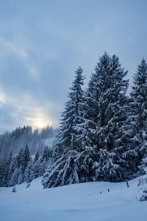 winter landscape with settling sun