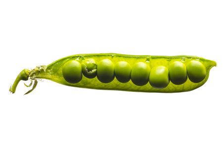 closeup of an open raw pea