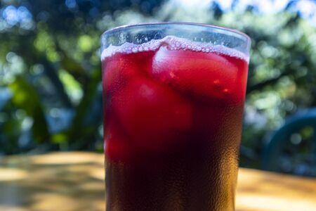 flor de jamaica drink with ice Zdjęcie Seryjne