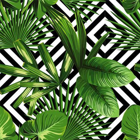 Drucken Sommer exotischen Dschungel Pflanze tropischen Palmenblätter. Muster, nahtlose Blumen auf dem schwarzen weißen geometrischen Hintergrund. Natur Tapete.